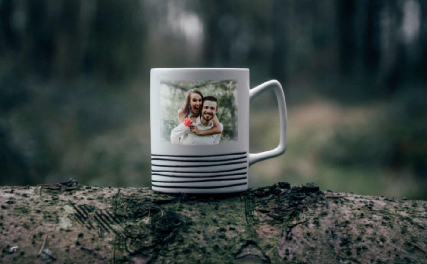 Harrier mugs