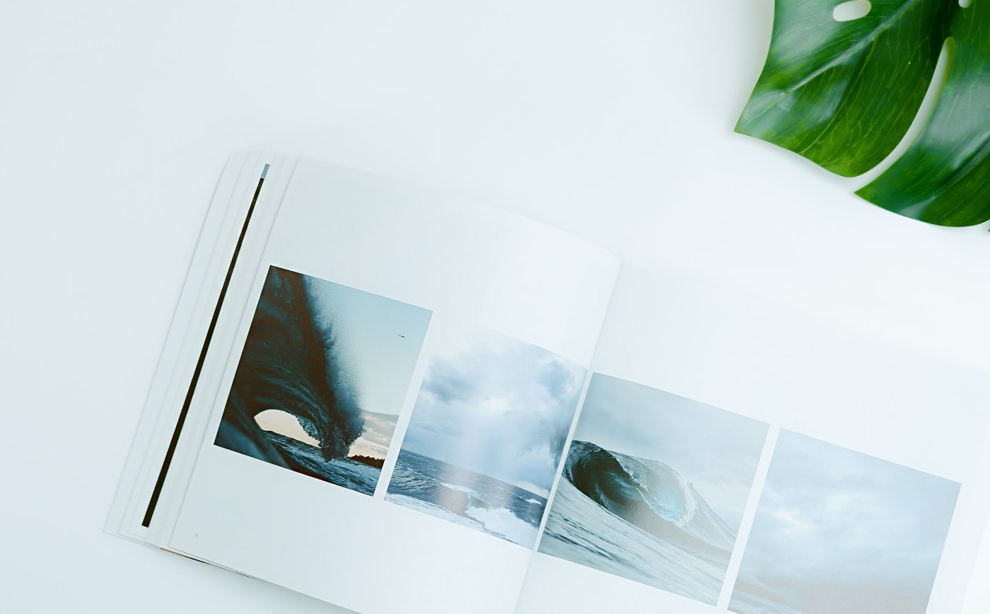 Harrier Photo books